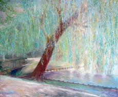 weeping-willow 50х60, оil, canvas.jpg